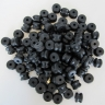 Lancia Aurelia & Flaminia exhaust springs rubbers